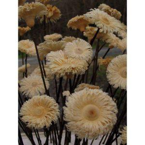 Flores de madeira